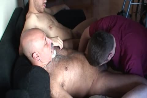 chubby group sex group-sex Bear Daddies