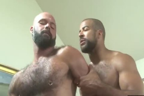 Marco And Roman fuck