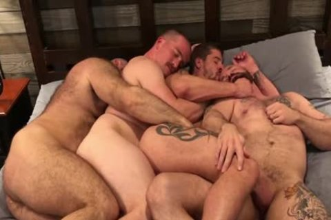Four Bears Breeding